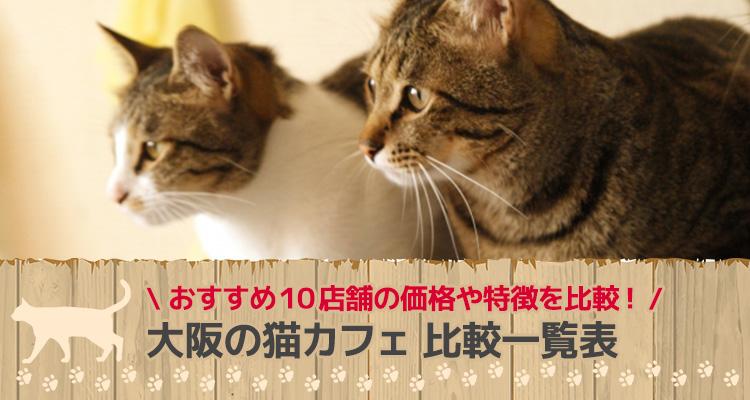 大阪の猫カフェ 比較一覧表