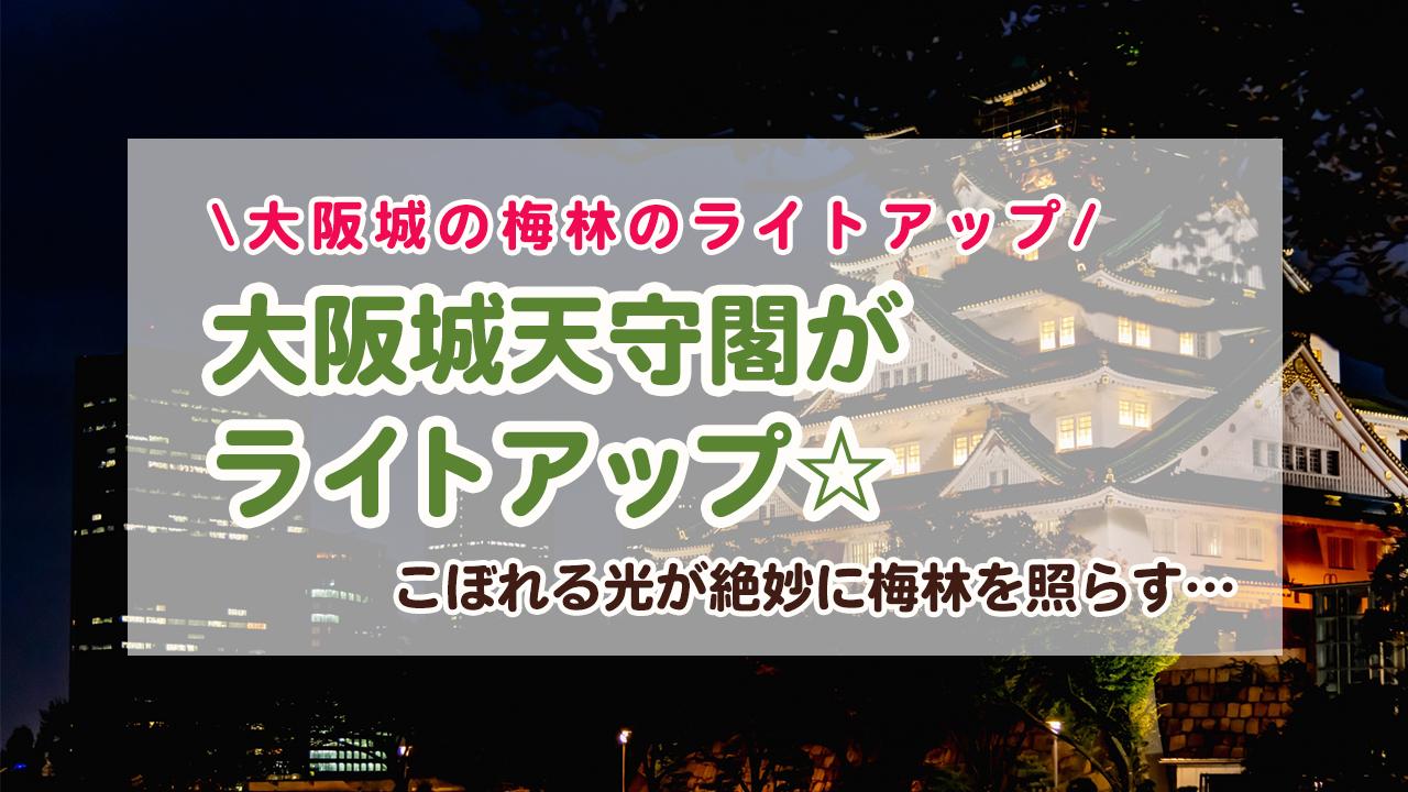 ライトアップされた夜の大阪城