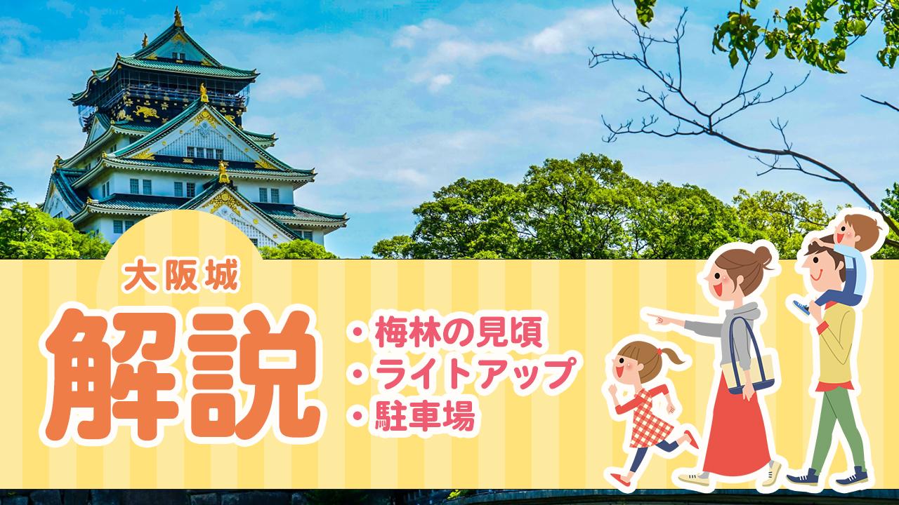 大阪城の梅林やライトアップ、駐車場を解説