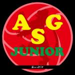 ASG JUNIOR FOOTBALL SCHOOL